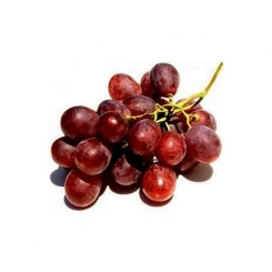 انگور سیاه کیلویی
