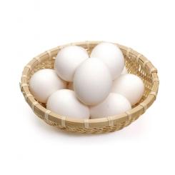 تخم اردک بسته 9 عددی